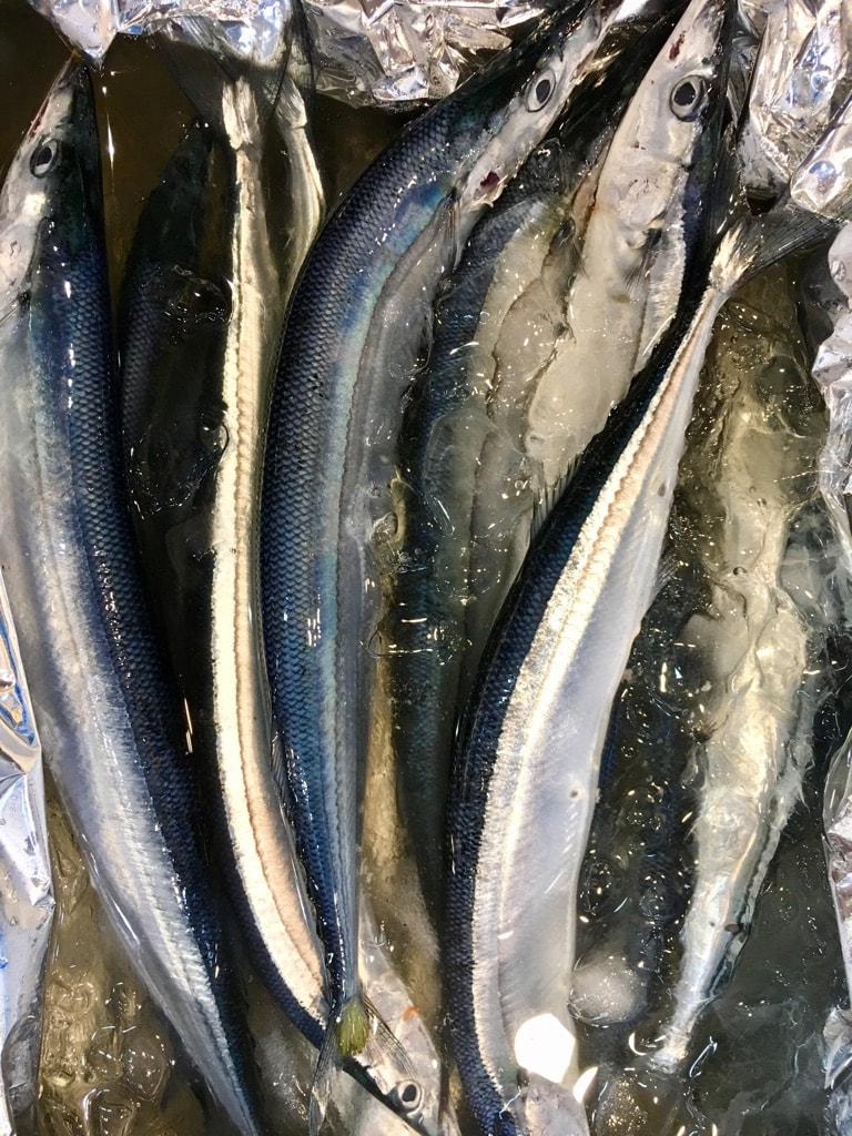 北海道厚岸産の生さんま♬サンマが取れてないですね⤵スルメイカもそうですが、高騰していますね。しかし、旬を味わっていただきたいです♬鮮度も良く脂もバッチリです!!